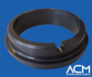 Silicon Carbide Seal Ring