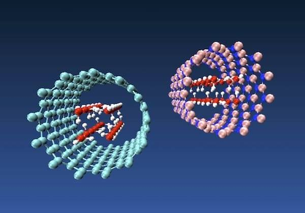 Differences in Properties Between Boron Nitride Nanotubes and Carbon Nanotubes