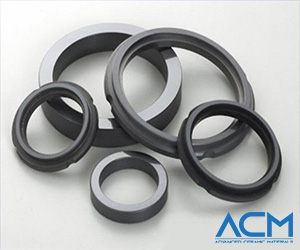 Silicon Nitride Seal Rings
